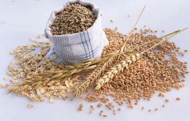 Benefício dos cereais para a sua saúde