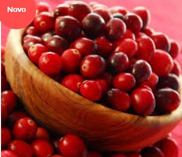 Cranberry 300mg - 60 cápsulas