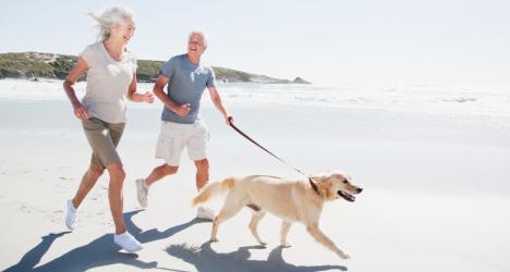 Sucupira é eficaz no tratamento de dores reumáticas