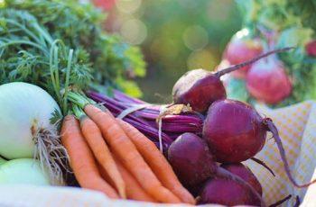 Os benefícios dos vegetais cozidos na sua alimentação