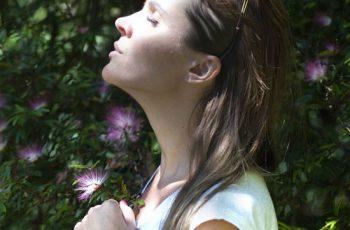 Tudo sobre Belladona e os benefícios da homeopatia