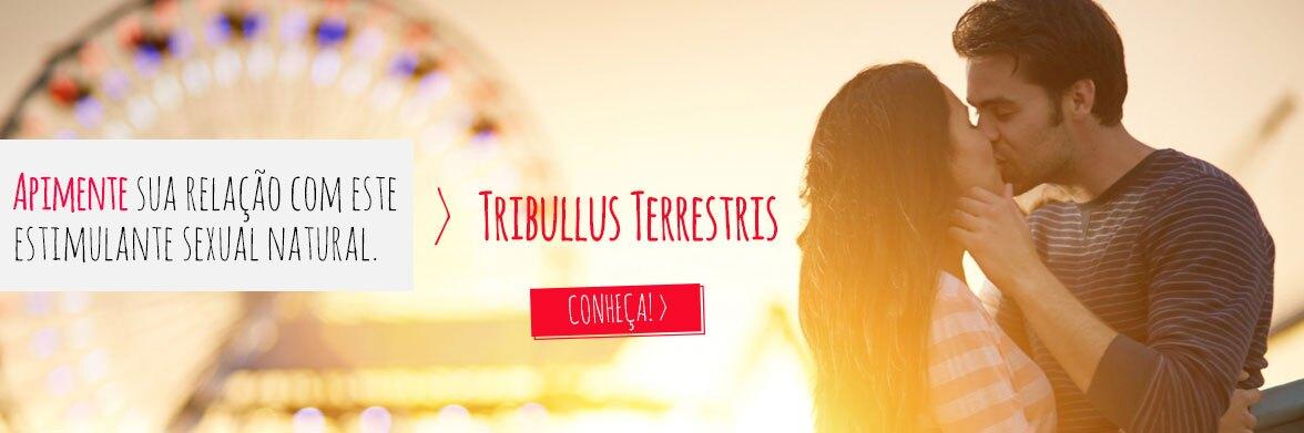 Tribullus