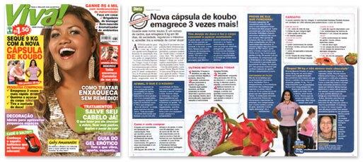 koubo-revista-viva-mais